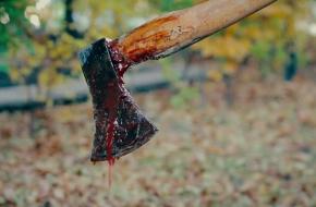 Стали известны подробности зверского убийства 14-летней школьницы: перед смертью девочку изнасиловали, а тело пытались расчленить