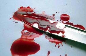 Жительница Спирово пришла в гости к родственникам и устроила кровавую бойню