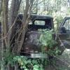 Под Торжком водитель «головастика» не смог разъехаться с деревом (фото)