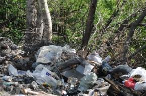 Несанкционированные свалки нанесли Лихославльскому району ущерб почти на 70 миллионов рублей