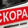 В московской клинике скончался ребенок, которого в Лихославльском районе укусила гадюка