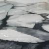 В Торжокском районе со дна реки подняли тело мужчины