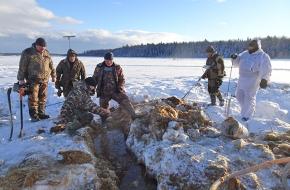 На границе Лихославльского района поисковики обнаружили обломки самолета, сбитого во время войны (фото)