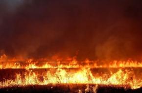 В Лихославльском районе при тушении горящей травы погиб пожарный-доброволец
