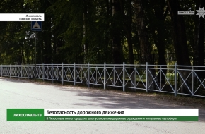 В Лихославле около городских школ установлены дорожные ограждения и импульсные светофоры (видео)