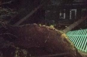 Лихославльский район приходит в себя после ночного шторма