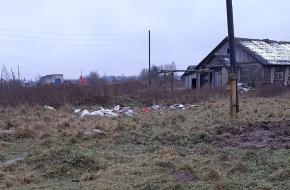 Власти Лихославльского района рассказали о ситуации с содержанием животных в деревне Гнездово