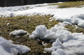 В Лихославле отменили проведение гражданско-патриотической акции «Снежный десант»