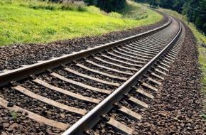 Жители Торжокского района умудрились украсть с железной дороги три 11-метровые рельсы
