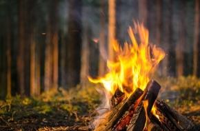 На территории Лихославльского района введен особый противопожарный режим