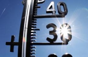 В Тверскую область пришла сильная жара и засуха