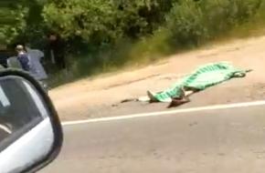 Под Лихославлем мужчина погиб под колесами автомобиля на пешеходном переходе (видео)