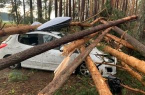 Жертвами торнадо, обрушившегося на Тверскую область стали три человека (фото, видео)