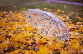 Жителей Лихославльского округа в ближайшие дни ожидает пасмурная, дождливая и ветренная погода