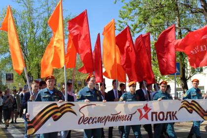 Шествие «Бессмертного Полка». Фото: Юлия Новикова