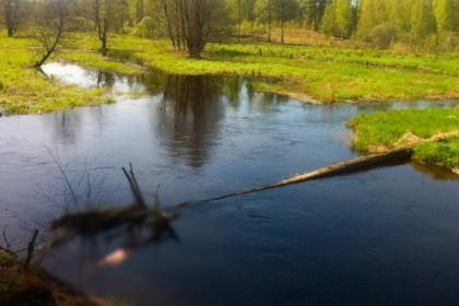 Обнаруженное в реке тело. Фото: СУ СК России