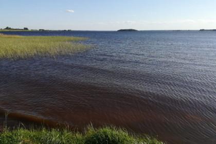 В Тверской области школьница спасла тонущую подругу, а сама утонула