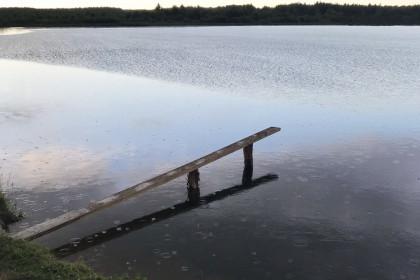 В водохранилище под Торжком утонул ребенок