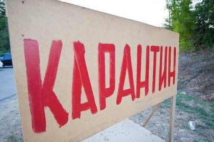 Фото: gorod-che.ru