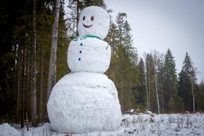 Огромный снеговик в лесу под Лихославлем. Фото: 360tver.ru