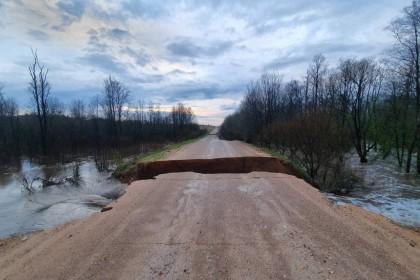 Наводнение в Спировском районе. Фото: Ирина Горохова